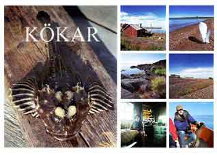 Kökar Collage By PS